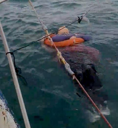 女子失蹤2年「在海上被找到」 邊漂邊活真相讓人鼻酸