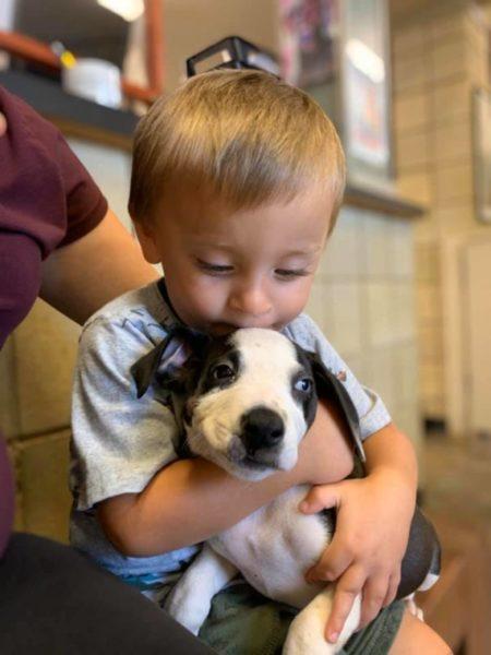 兔唇男孩「領養缺陷狗狗」 暖心陪伴彼此:我們變完美了❤