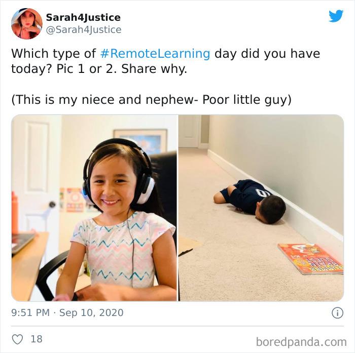 10位「上課比人生還難」的厭世屁孩 她用「貓咪作弊」騙過老師