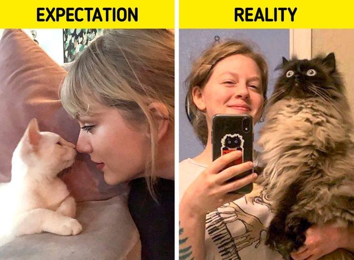 理想VS現實