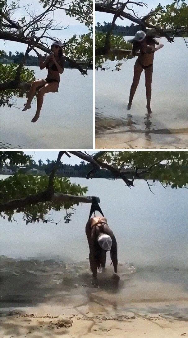 網美拍照吃鱉