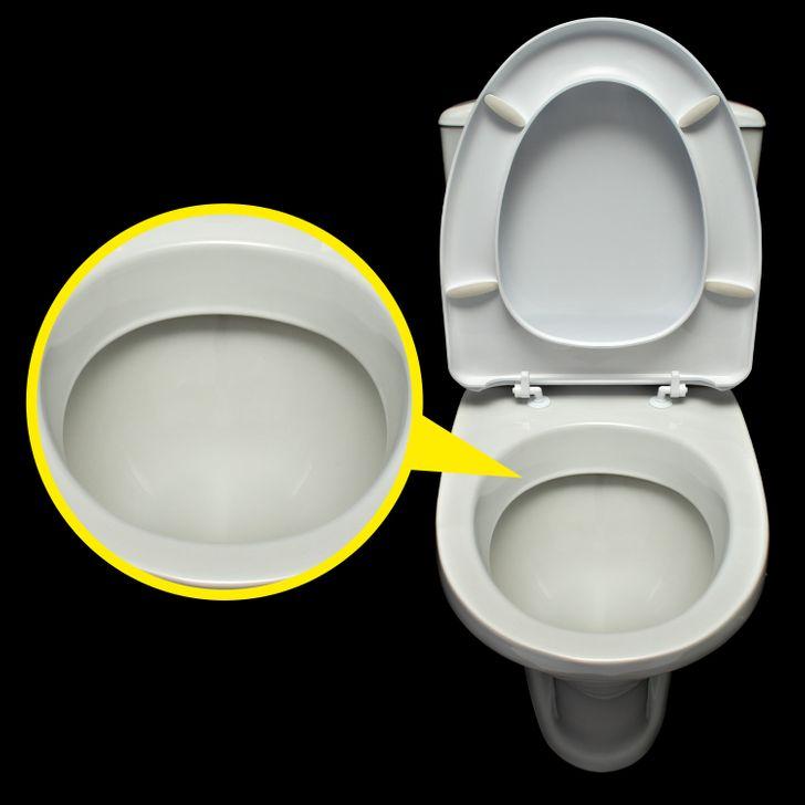 為什麼馬桶「永遠都是白色」的?其實每年都有「世界廁所日」!