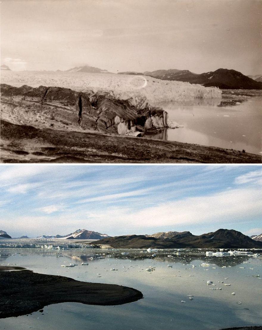 世界危機!7個「北極百年變化」驚人對比:冰川「消失一大半」
