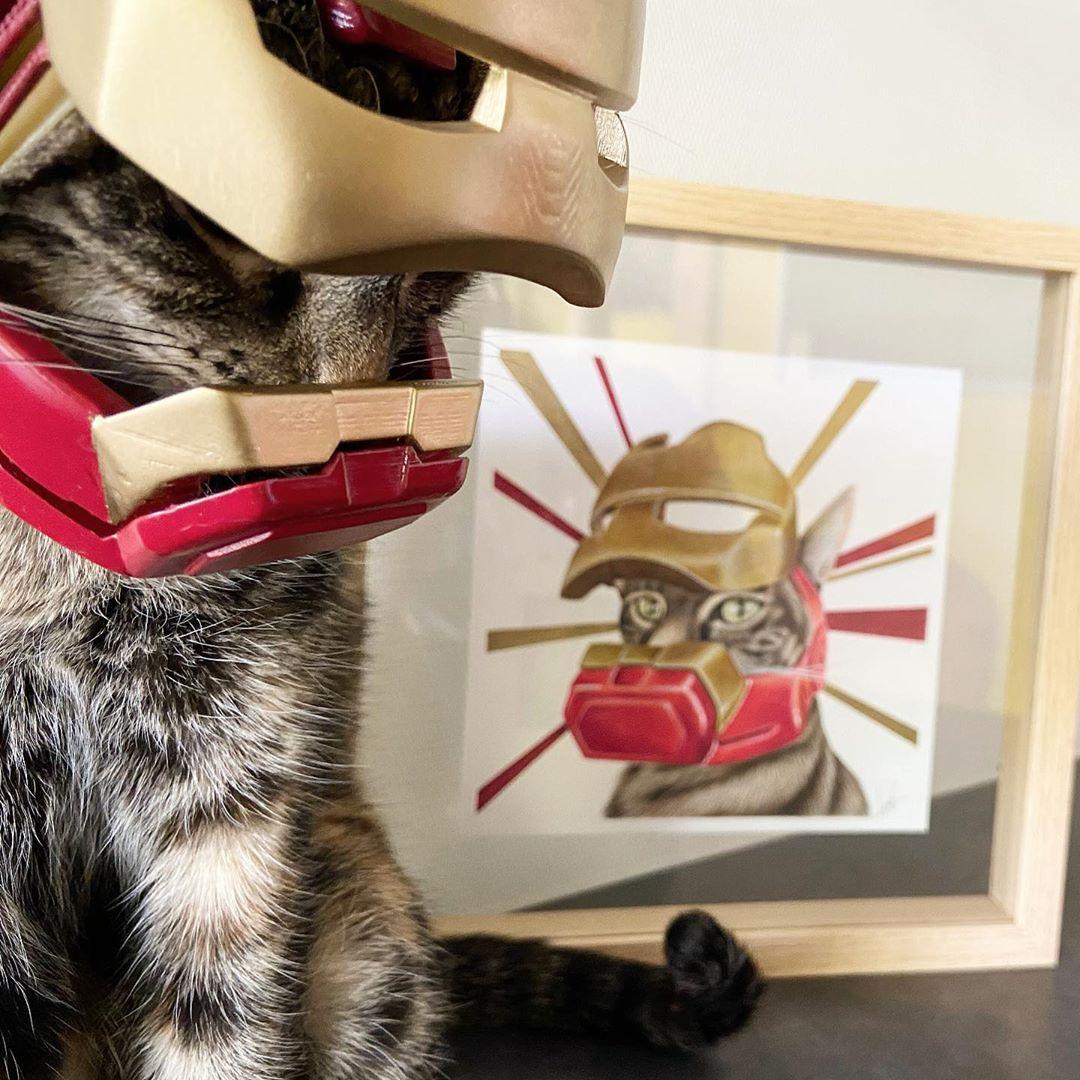 影/他用3D列印打造貓咪專用「鋼鐵人頭盔」!還會「自己開關」太帥氣