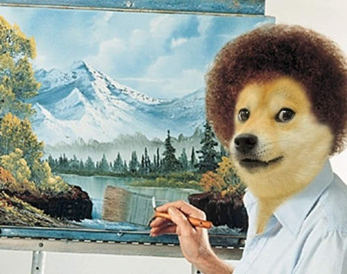 超夯「迷因柴犬」現在還好嗎?14歲汪星人近況曝光「跟照片差超多」