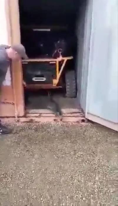 受困貨櫃2個月「沒人發現」 貓咪靠一招存活下來!