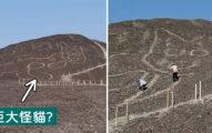 貓咪統治地球證據?山坡上發現「巨大怪貓」 專家:跟神秘儀式有關