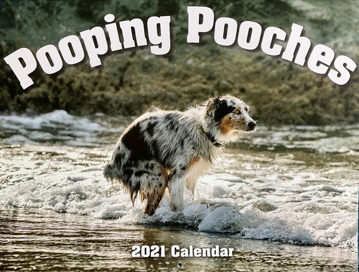 2021「狗狗便便月曆」新出爐 姿勢夠標準才能當封面人物!