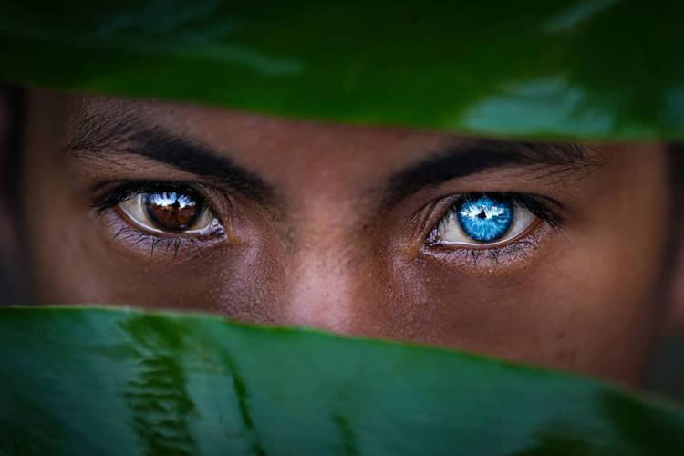 極少數人才有的「世界最湛藍瞳孔」...原因其實是「美麗的錯誤」