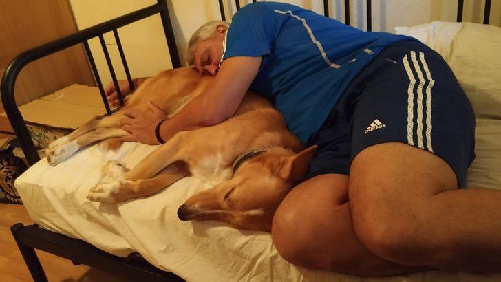 20張「我不想養狗」諷刺照 「爸爸偷跟狗玩」被抓包太可愛❤
