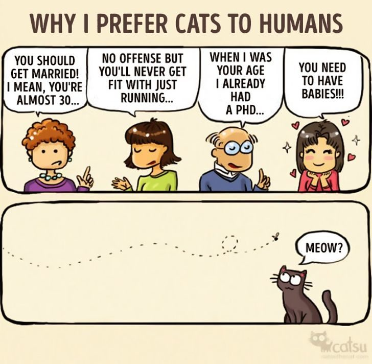 跟貓同居後
