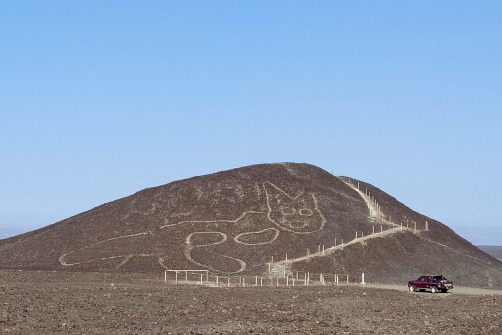 世界遺產發現「神秘巨貓」!專家:來自2000多年前的古文明