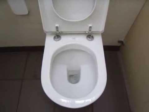 廁所公告怨念超重!曝光「中肯內容」網一面倒:這種人最討厭