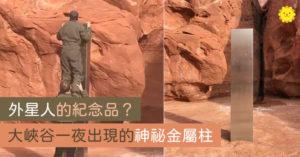 去峽谷找羊...驚見荒野有「詭異金屬柱」是外星人的訊息?