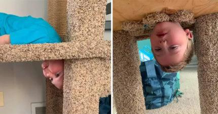 4歲男童「以為自己是貓」 學喵星人「鑽跳台」...害消防隊整隊出動!