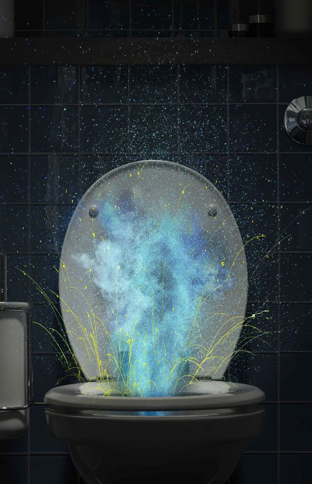 專家拍2張沖馬桶真相 如果沖水「沒先蓋」...細菌直接噴臉!