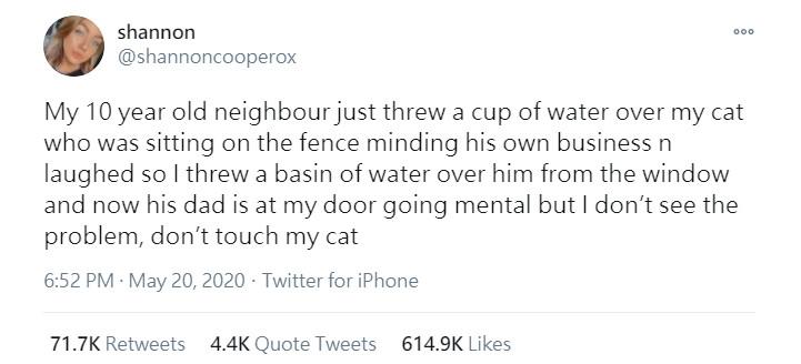 目睹愛貓被潑水!主人爆氣「潑回去」 網友掀教育論戰