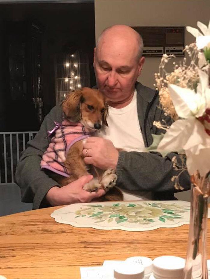 16個「當初說不想養狗的人」後來怎麼了? 邊嫌棄邊叫狗小公主❤