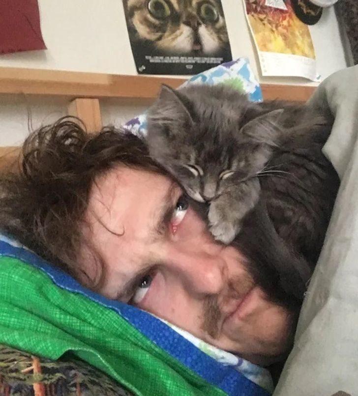 動物怎樣都能睡