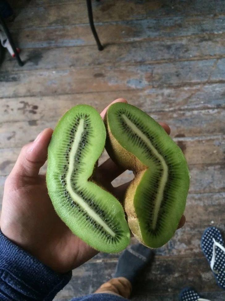 19個「大自然是藝術家」的證明 「會咬人的南瓜」你敢吃嗎?