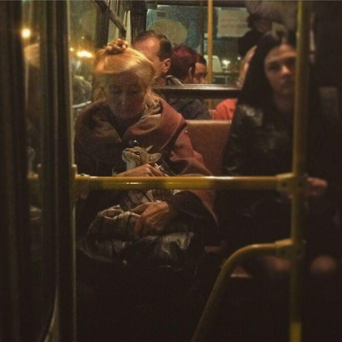25張「一個不小心拍出了名畫」的意外文藝照 蒙娜麗莎也會搭公車!
