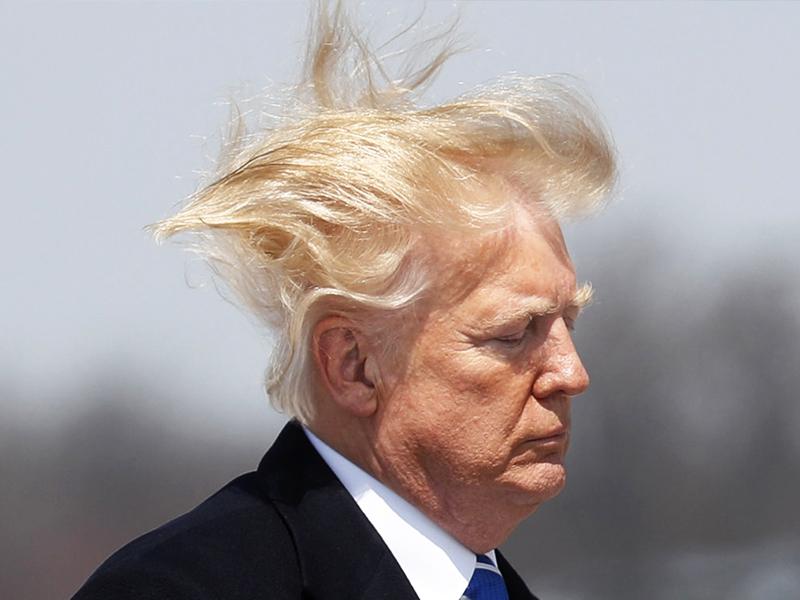 Q萌「貓毛蟲」號稱史上最毒 網見本尊歪樓:確定不是某總統?