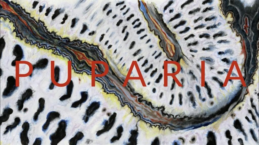 他神級作畫「自製短片」一夜爆紅 《PUPARIA》背後的原畫師故事