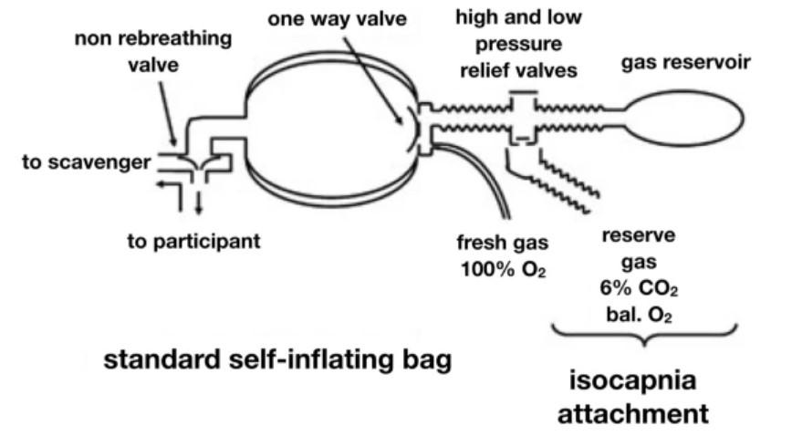 研究發現只要「大口呼吸」就能不喝醉 專家:沒人知道真奇怪