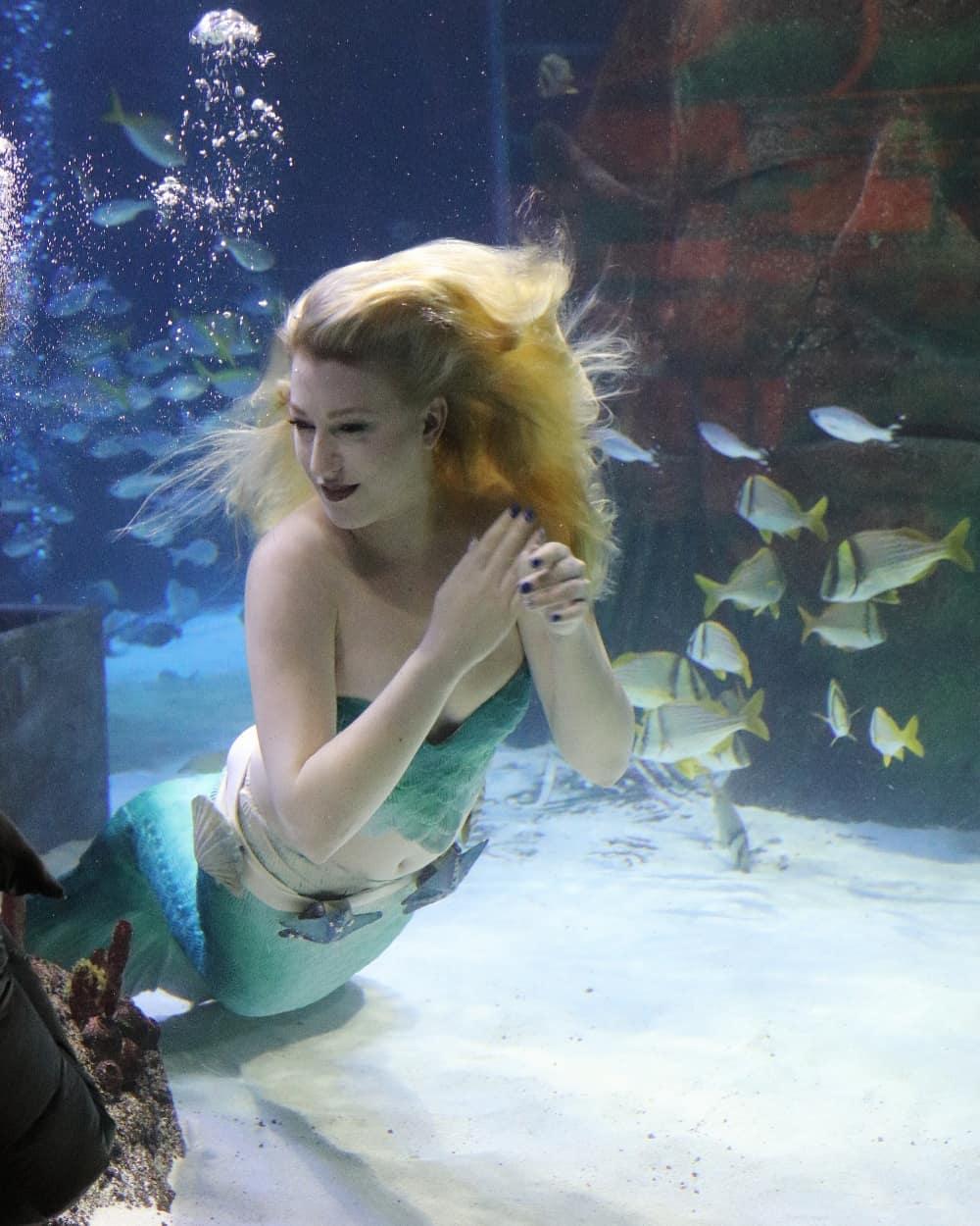 正妹讓自己變「真正的美人魚」 躺水底「不用氧氣瓶」賺到開公司!