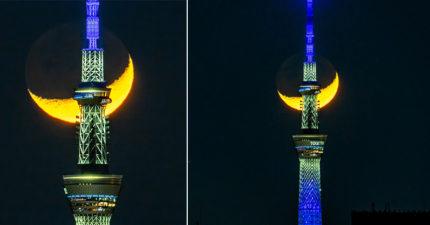 攝影師拍下晴空塔「奇蹟美照」 內行PO圖對比:是《美少女戰士》!
