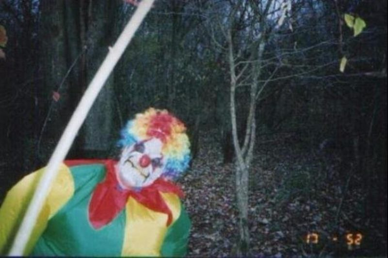 18張「森林攝影機」拍到的詭異照 「小丑探頭」讓你想叫不敢叫!