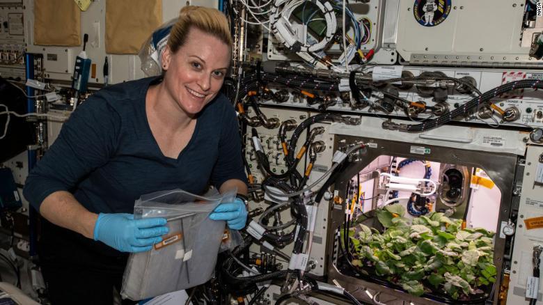 NASA種出史上第一批「太空蘿蔔」!27天「重力成長」影片公開