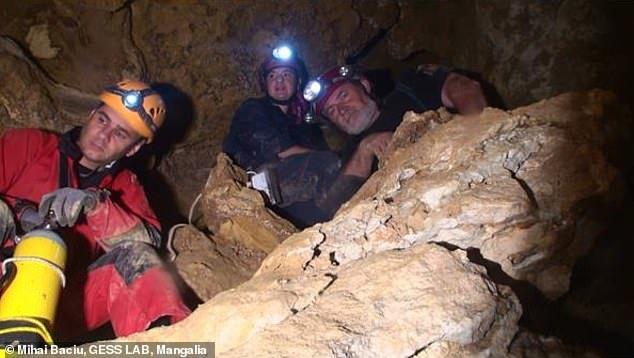 洞穴之王蜈蚣Cryptops speleorex