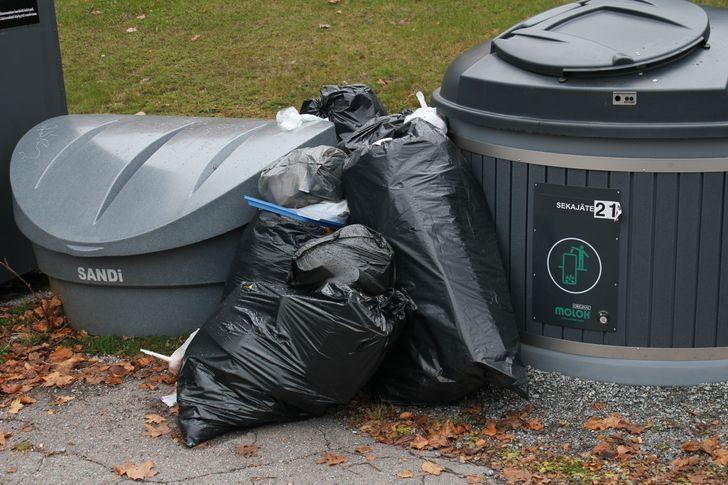 13個台灣人很難理解的「芬蘭怪奇習慣」 幫忙撿垃圾會犯法!