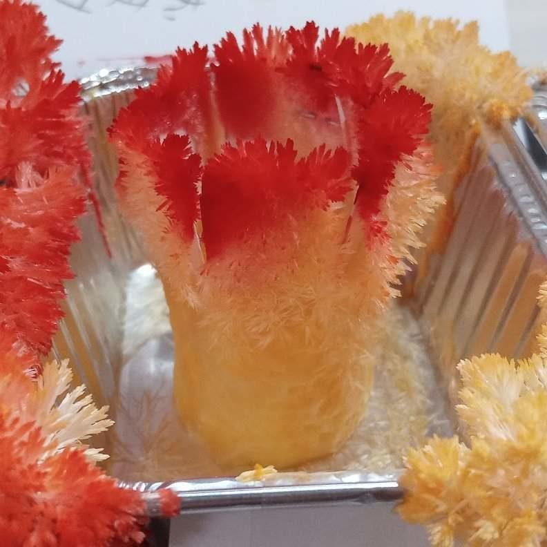 「炎柱頭髮像尿素結晶!」小2童神還原煉獄髮型 網看實驗過程:超天才