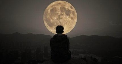 新研究發現「月亮」影響睡眠 滿月前幾天「突然很累」不是都市傳說!