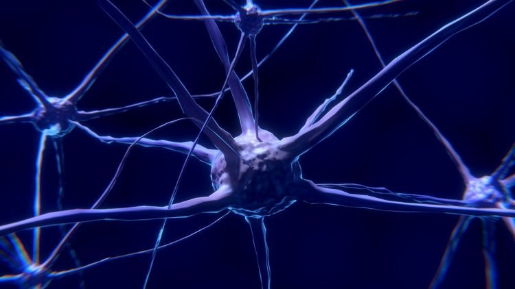「很難想像」近年才被定為病 全世界2.5%的人「腦海一片空白」