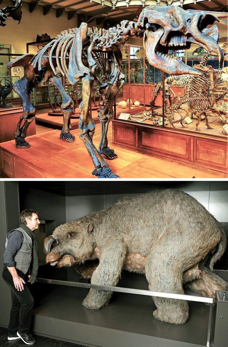 13項「真正的歷史比電影更酷炫」的考古發現 2000年前美食保存至今