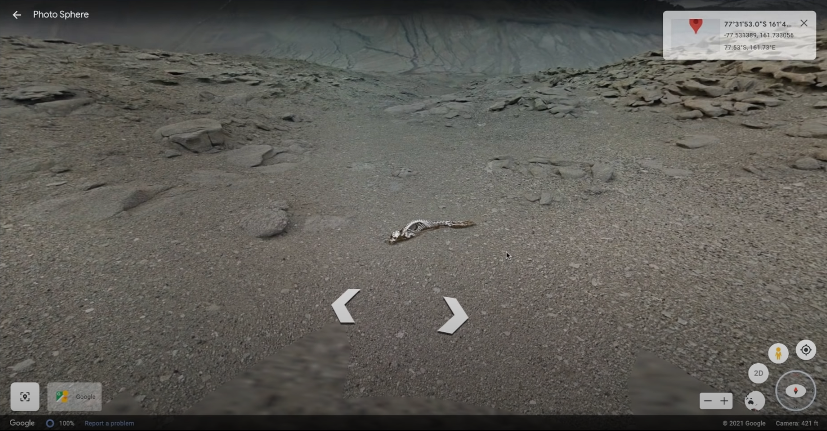 Google街景驚見「神秘生物骸骨」 他放大細看...白骨真身曝光