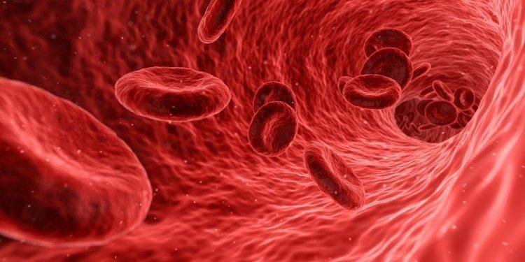 嘗試注射蘑菇進體內 美男「血管長出菇」險送命