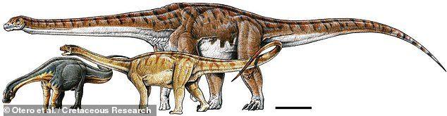地表最巨大生物泰坦巨龍