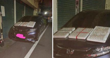 引擎蓋放「滿滿圖釘板」防貓!愛貓者怒戰網友:睡你車上是臨幸你