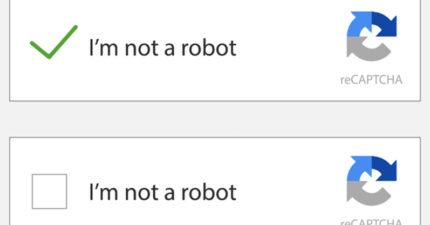 「我不是機器人」怎知道是不是人類?資工教授曝:「打勾」讓你露餡