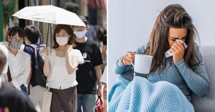 防疫意識提高 專家發現「流感病患暴跌95%」:流感將滅絕!