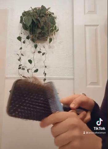 把乾淨梳子「泡水30分鐘」 洗出「超噁成果」她嚇壞:才兩星期