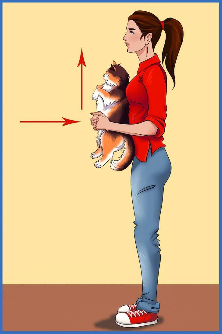 毛小孩噎到無法呼吸?「7點判斷+3步驟搶救」哈姆立克法也適用!