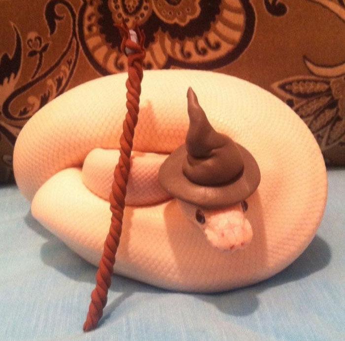 覺得蛇很可怕?小心這些「戴帽帽」賣萌蛇改變你 「獨角獸蛇蛇」可愛到暈啦~