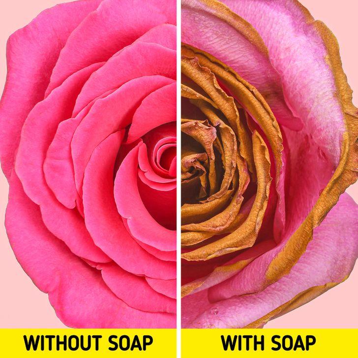 用什麼洗澡最好?5個用肥皂洗澡的「可怕後果」 「皮膚皺紋」變多有原因