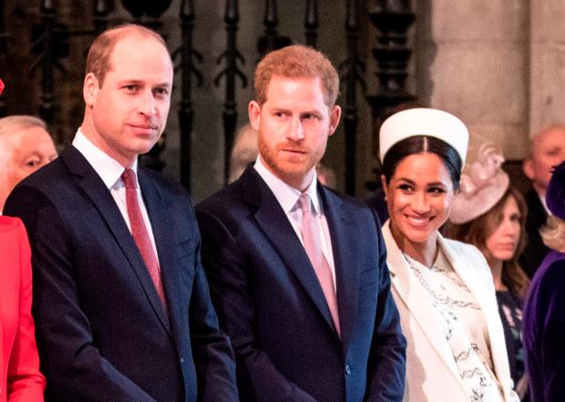 皇室崩壞?哈利梅根「傷透女王」威廉暴怒 專家:君主制有麻煩了