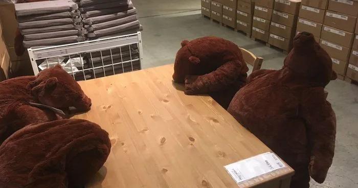IKEA「厭世熊」爆紅!胖肚肚「不想努力了」、頹廢「沒骨頭攤坐」超療癒❤
